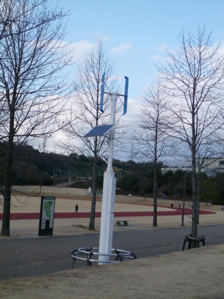 風力・ソータ.JPG